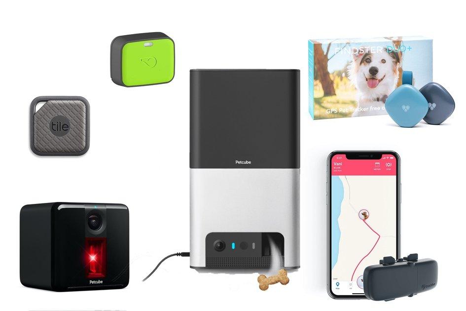 Theo dõi thú cưng tốt nhất 2020: Có thể đeo và máy ảnh để giữ an toàn cho thú cưng của bạn 2