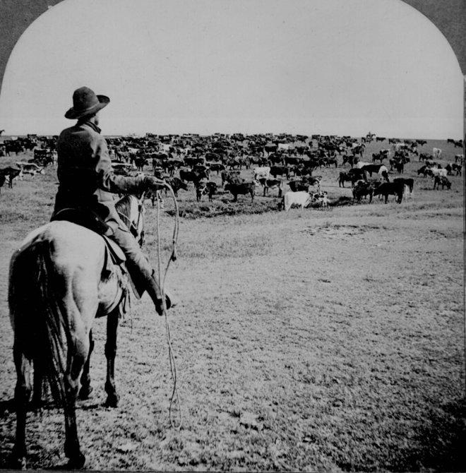 Những bức ảnh nổi bật từ miền Tây nước Mỹ - chân dung thời gian đơn giản hơn 5