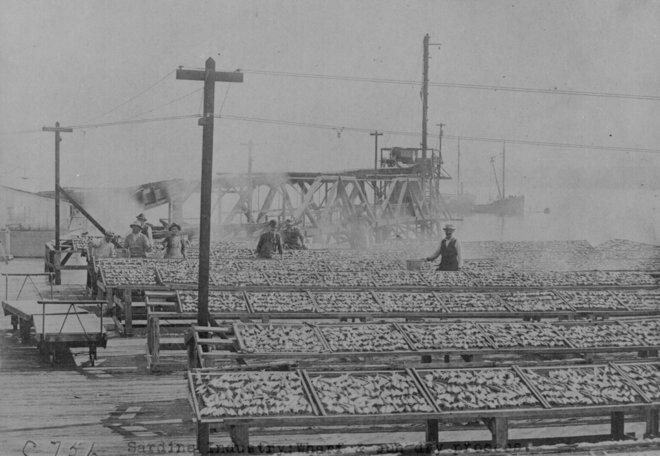 Những bức ảnh nổi bật từ miền Tây nước Mỹ - chân dung thời gian đơn giản hơn 13