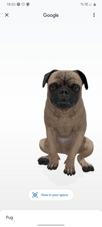 Google 3D Hayvanlar: 30'dan fazla AR canlısı, 1 uyumlu telefon listesi