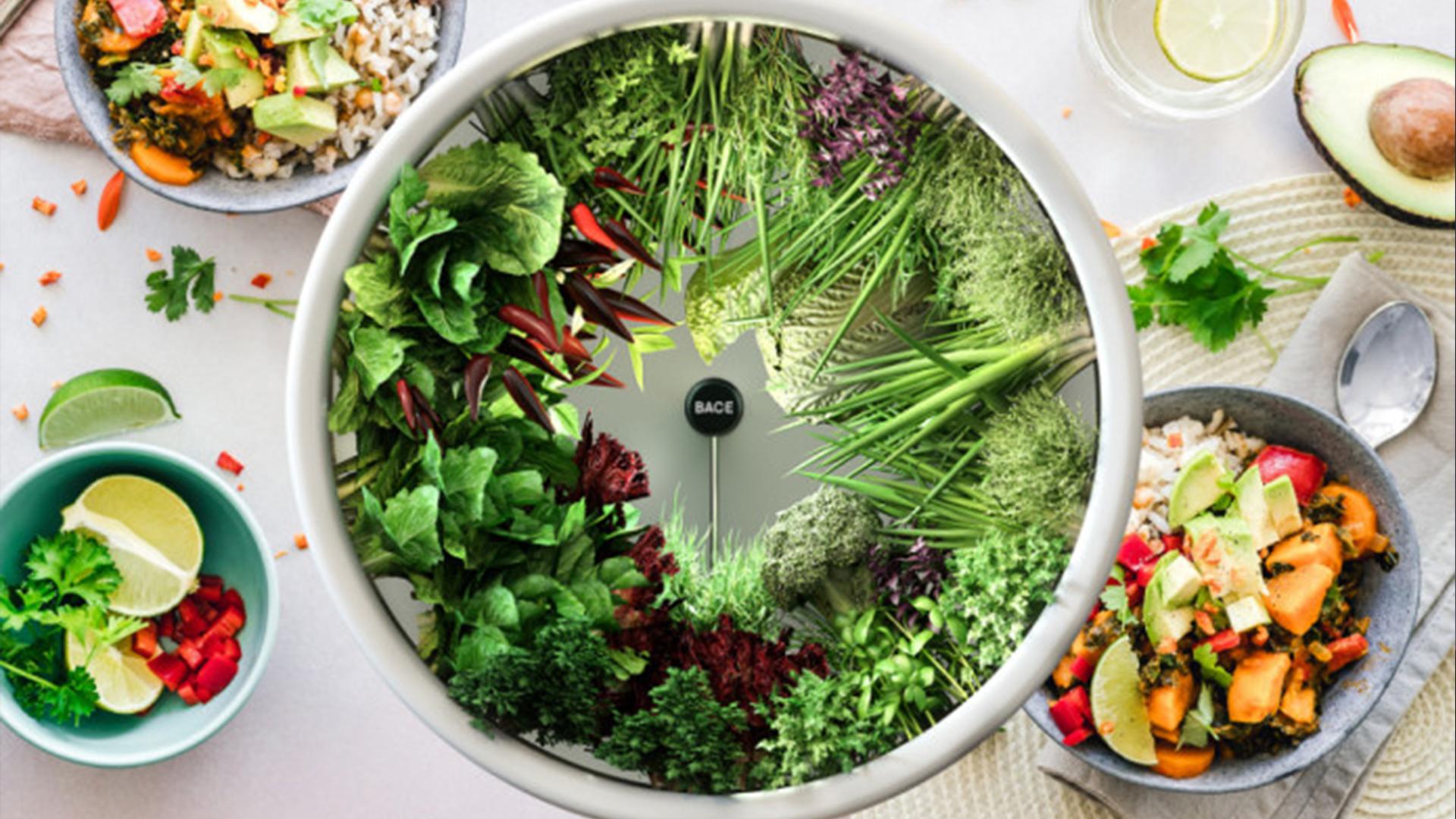 Temui Rotofarm, yang membolehkan anda menanam sayur-sayuran di rumah seperti angkasawan NASA