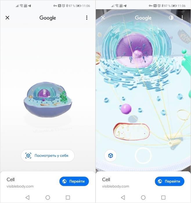 Google 3Yaponiyada 3D görünən heyvanlardan daha çox