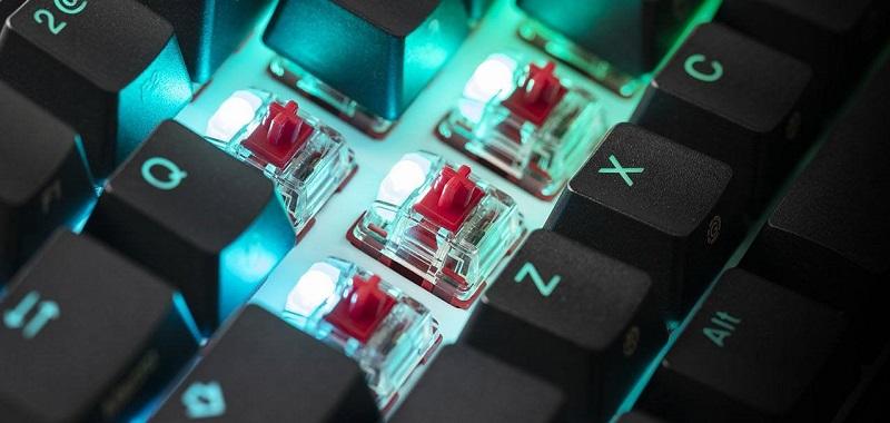 HyperX x Vịt 2 Nhỏ