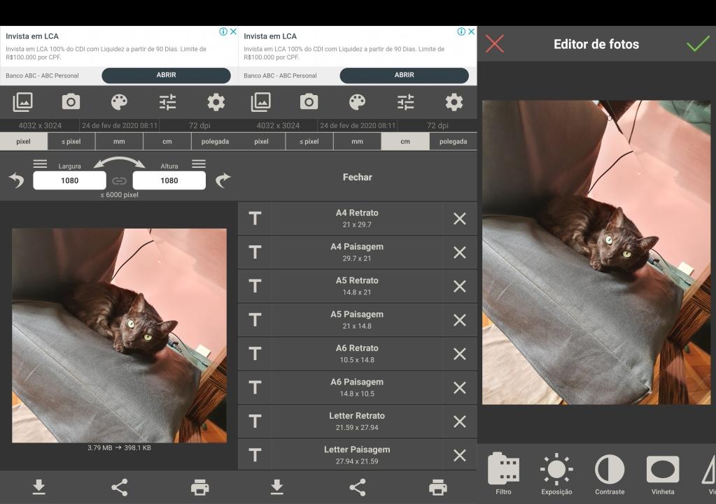 Görüntü Boyutu düzenleyici ekranı. Bir koltukta yatan bir kedi fotoğrafları devam ediyor.