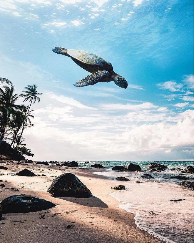 Masuk ke dunia lain dengan pengeditan foto seperti mimpi yang luar biasa ini 22