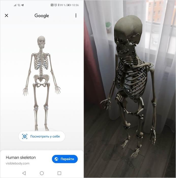 Google-da görünən 3D-dən çox heyvan 1