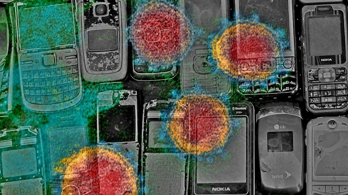 Hallitus kehittää COVID-19-puhelinominaisuuden yhteyshakuratkaisua: IT-ministeri R S Prasad