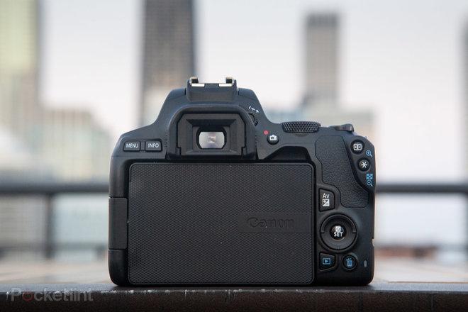 Recenzia Canon EOS 250D (Rebel SL3): Návrat k základným informáciám 1