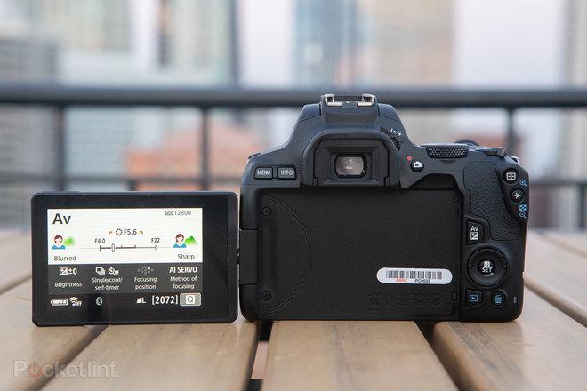 Recenzia Canon EOS 250D (Rebel SL3): Návrat k základným informáciám 4