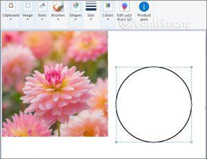 Orezanie fotografie v kruhu pomocou programu Skicár a Maľovanie 3D 3