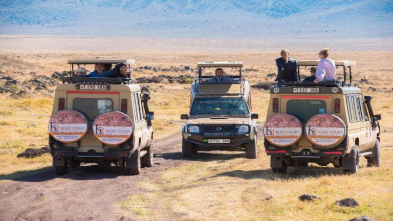 5 Veci, ktoré by ste mali vedieť pred cestou na novozélandský výlet na safari 1