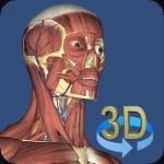 Anatomické aplikácie pre Android: najlepší spôsob, ako sa dozvedieť viac o svojom vnútri 5