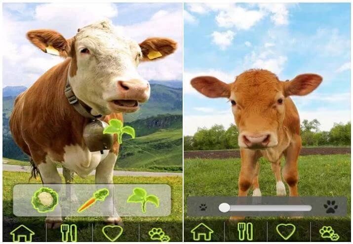 Zábavná hra pre zvieratá AniWorld pre deti