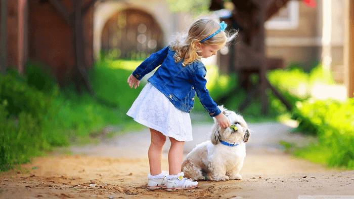 Dievčenský pes