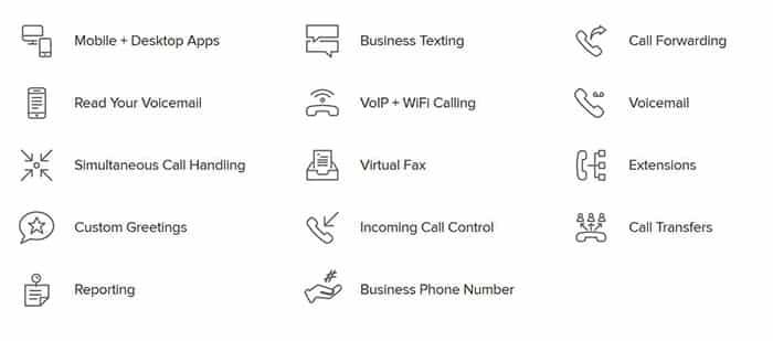 Najlacnejšia telefónna služba VoIP v roku 2019 - funkcie kobylky